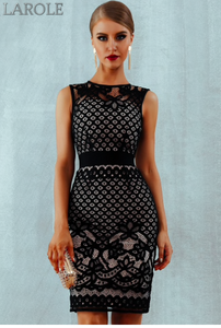 Elegant Black Lace Hollow Out Sexy Bodycon Women Dress