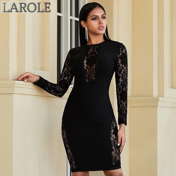Black See Through Sheer Lace Long Sleeve O-Neck  Party Bandage Dress