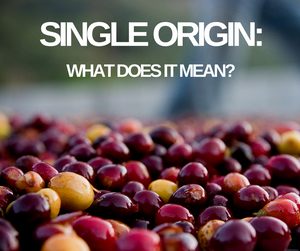 Why are Single Origin Coffees so expensive and yet so desirable and are they better???