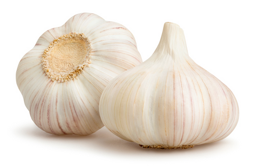 Case of Garlic