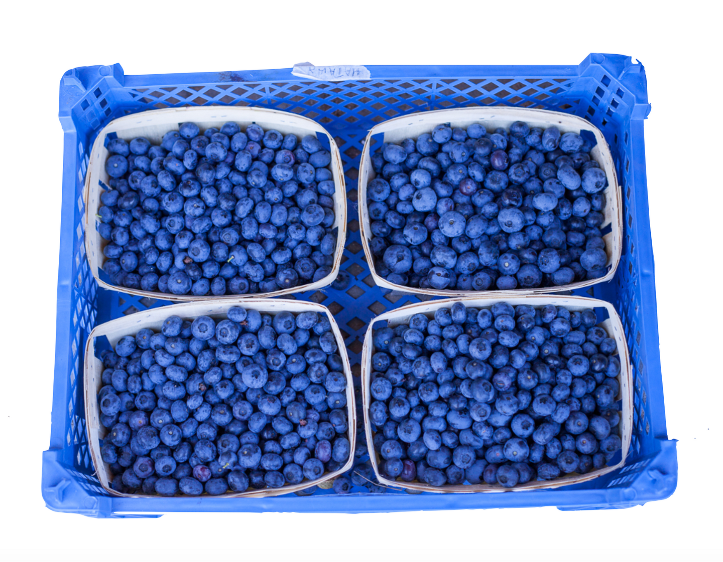 Case of Blueberries
