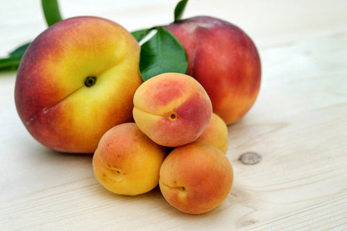 Case of Apricots