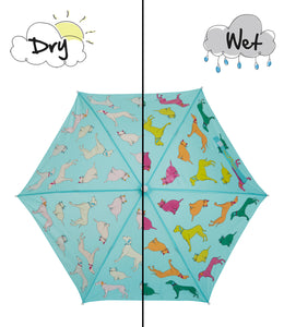 Cats and Dogs Color Changing Umbrella