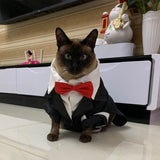 Pet Male Dog Cat Wedding Dress Boy Dog Cat Tuxedo Suits Puppy and Kitten Clothes Wedding Party Costume for Dachshund Shih Tzu