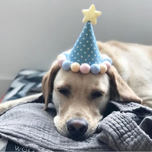 BLUE POLKA BARKDAY HAT