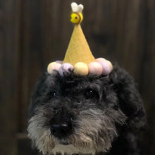 HONEYBEE BARKDAY HAT