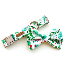HOLLY - COLLAR 2.5cm Large // READY TO SHIP