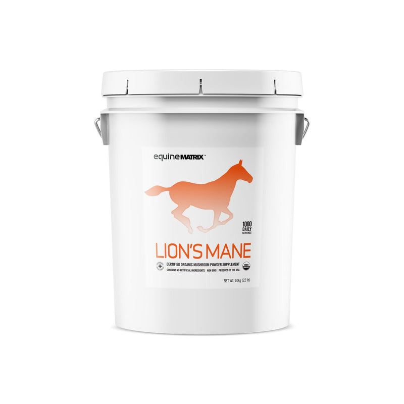 Lion's Mane Mushroom Supplement for Horses