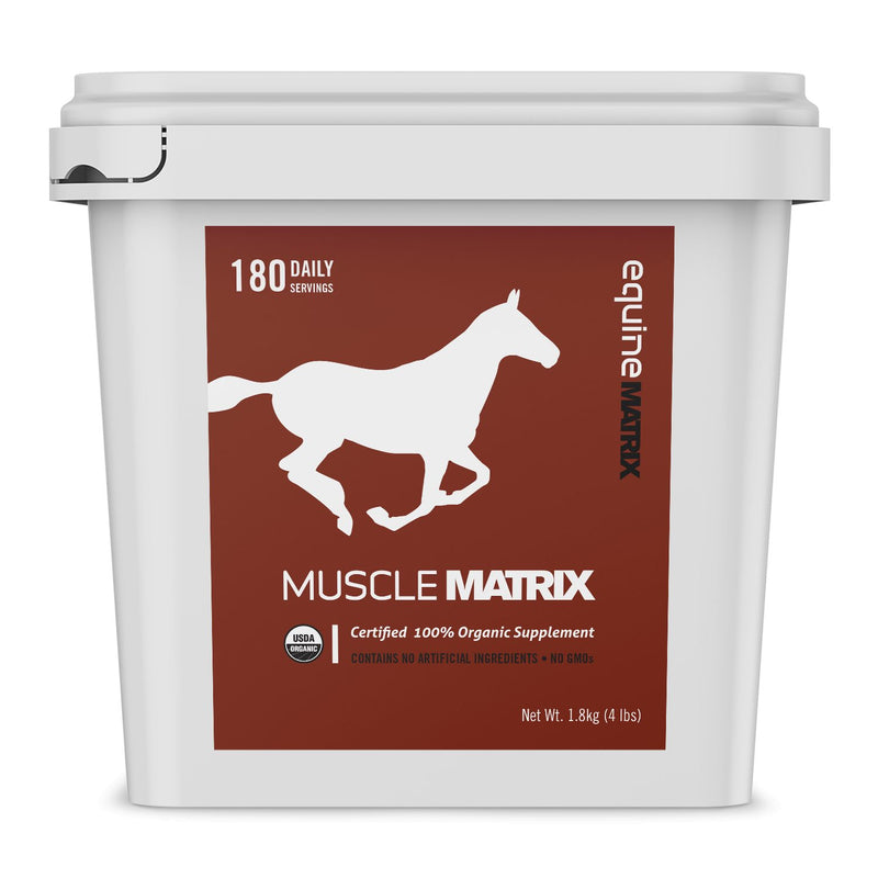 Equine Matrix Muscle Supplement