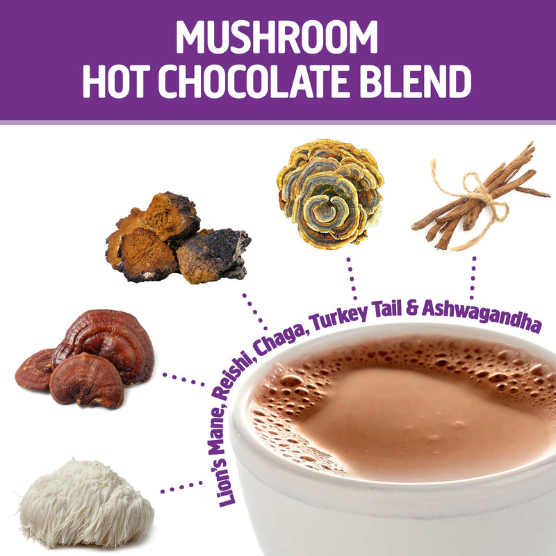 Mushroom Hot Chocolate Blend