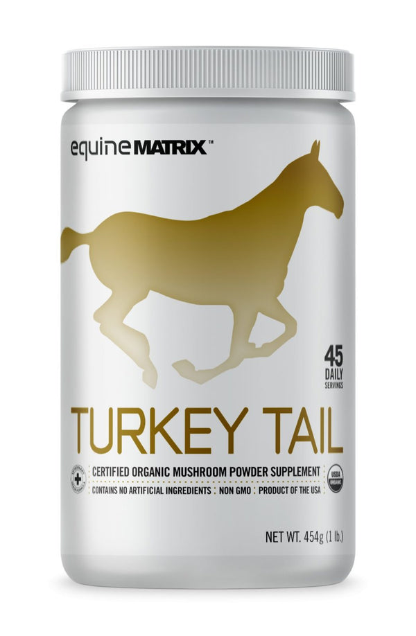 Turkey Tail Mushroom Supplement for Horses