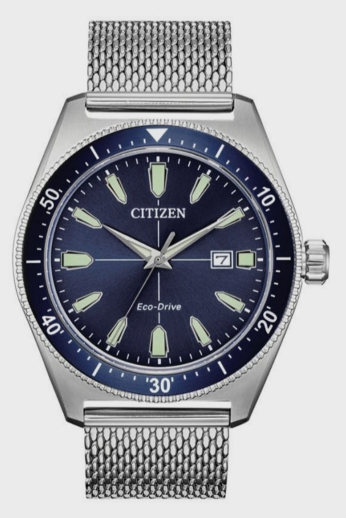 Citizen Vintage Mesh