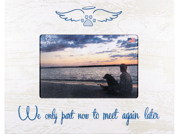 Sympathy Frame - We Only Part Now to Meet Again Later