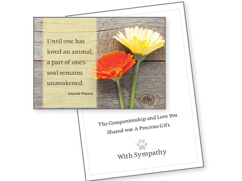 Pet Sympathy Card - Until One Has Loved An Animal...