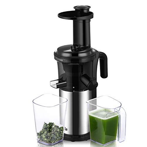 Juicer Machine, Argus Le Slow Masticating Juicer Extractor with Reverse Function, Cold Press Juicer with 200W Quiet Motor, Easy to Clean Juicer for Fruit and Vegetable