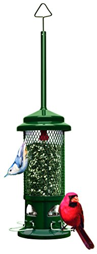 "Squirrel Buster Standard 5""x5""x21.5"" (w/hanger) Wild Bird Feeder with 4 Metal Perches, 1.3lb Seed Capacity"