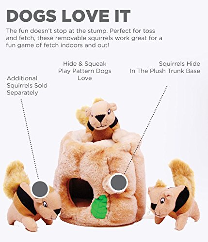 Hide a Squirrel Fun Hide and Seek Interactive Puzzle Plush Dog Toy by Outward Hound, 4 Piece, Junior