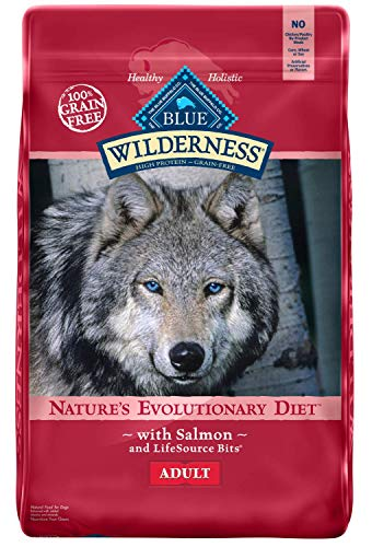 Blue Buffalo 840243105373 Wilderness High Protein Grain Free Natural Adult Dry Dog Food Salmon, 24 lb., Blue (Pack of 48)
