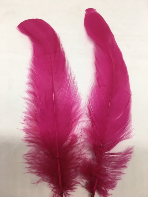 Coque Tail Feathers (untrimmed) - Lon - B Unique Millinery