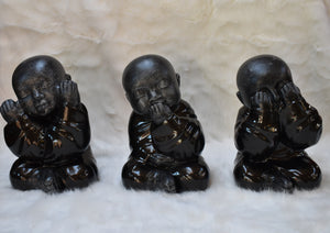 Shaolin CI Black Glossy See (Sold as a set of 3)