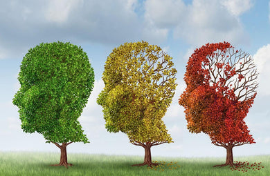 Dementia Care Practitioner Course - August 25th, 2020