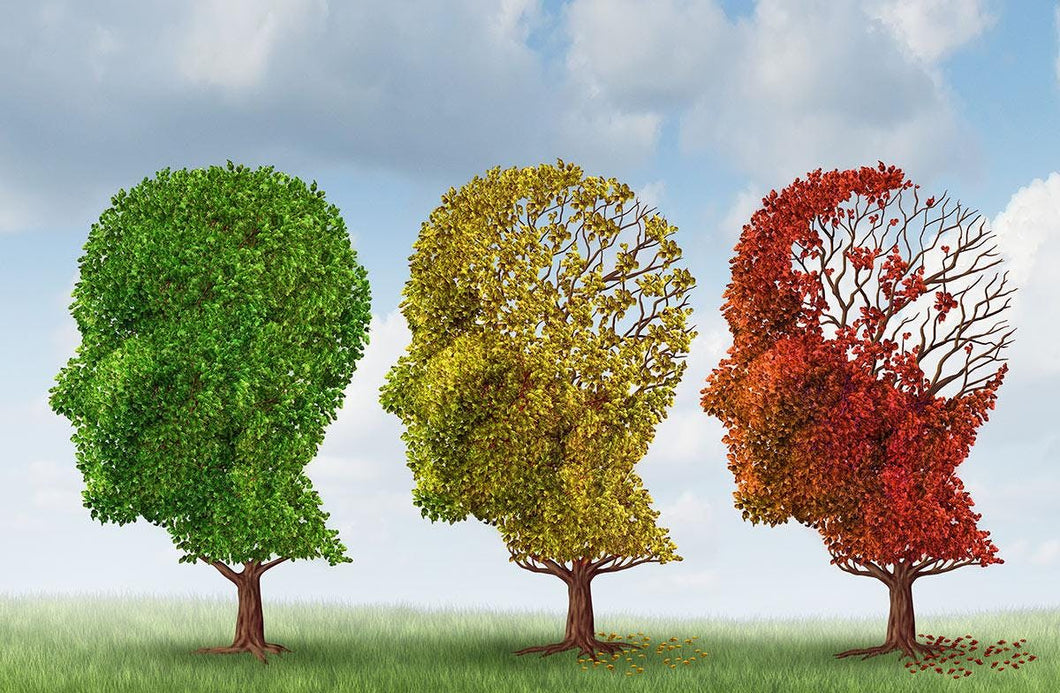 Dementia Care Practitioner Course - May 13, 2019