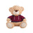 Fluffy toy Sport Bear (50 cm)