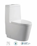Dual Flush One-piece Toilet SK125