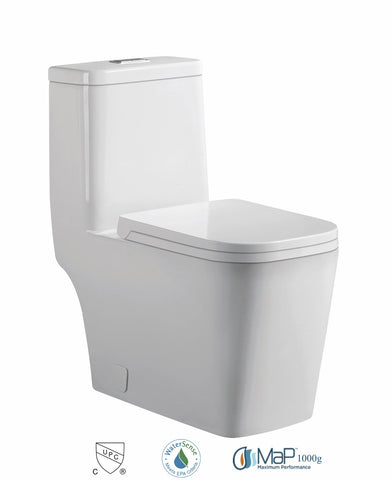 Dual Flush One-piece Toilet SK128