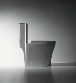 Dual Flush One-piece Toilet SK151