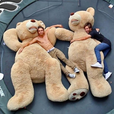 giant-teddy-bear-outer-animal-toy-cover-diy-costume