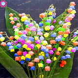 Lily Of The Valley Flower-50 Pcs/Bag