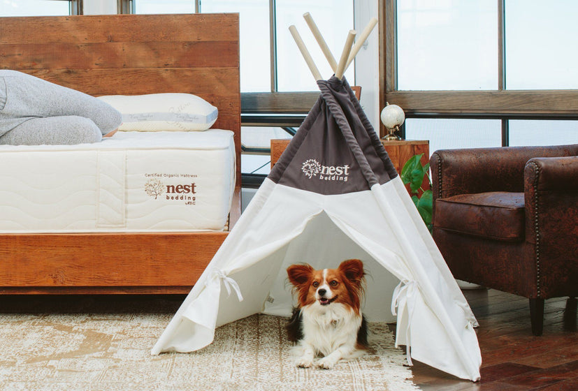 Nest Bedding Pet Tent