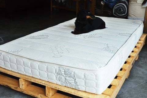 The Q3 Jr. Natural Latex Mattress