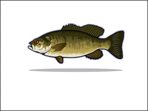 000 Small Mouth Bass