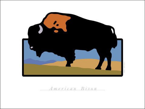 B.American Bison Digital Studio Print