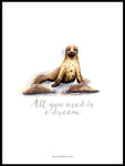 Poster: All you need is a dream (Seal), by Ekkoform illustrations