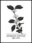 Poster: Arabian Coffee, by Paperago
