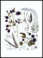 Poster: Berries and leaves, by Discontinued products