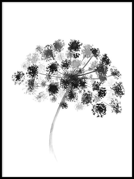 Poster: Hogweed, by Sofie Rolfsdotter