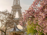 Poster: Cherry Blossom at Eiffel II, by Magdalena Martin Photography