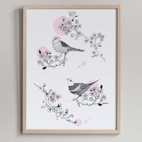 Poster: Cherrybird, by Discontinued products
