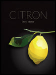 Poster: Lemon, by Lisa Hult Sandgren