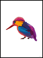Poster: Colorful Birds #41, av PIEL Design