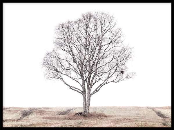 Poster: The lonely tree, by EMELIEmaria