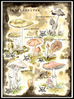 Poster: Deadly mushrooms, by Ateljé Enström