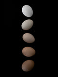 Poster: Egg shades, by EMELIEmaria