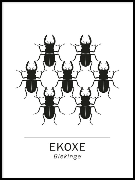 Poster: Stag beetle the official animals of Blekinge, Sweden., by Paperago
