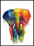 Poster: Elephant in watercolor, by Lindblom of Sweden