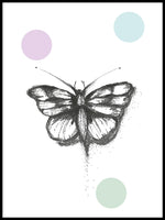 Poster: Butterfly, by Discontinued products
